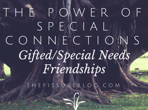 The Power of Special Connections: Gifted/Special Needs Friendships