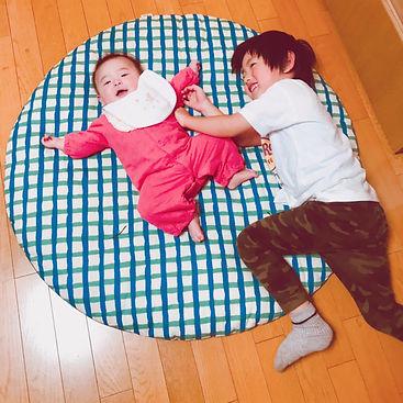 座布団の上でゴロゴロしたり、お昼寝したり、我が家の兄妹のお気に入りの場所です。
