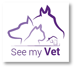 See_my_vet_-_Créa_Landing_page_V2-03.pn