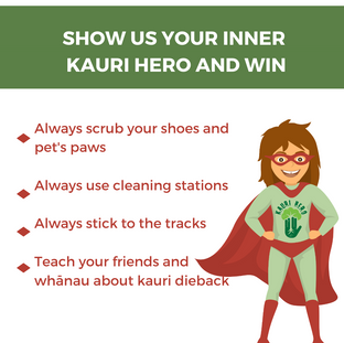 SHOW US YOUR INNER KAURI HERO - TILE.png