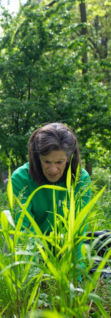05072019-Gardeners-Climbers-Flowers-8927