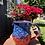Thumbnail: Star Spangled Mug