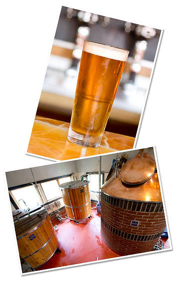 brewery_collage.png