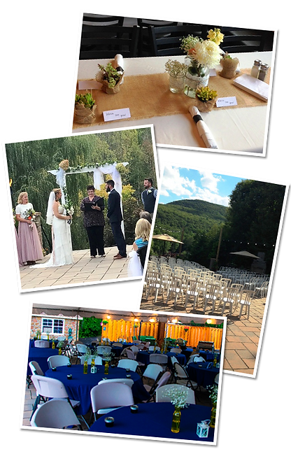 catering_wedding_collage.png