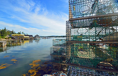 Bernard Maine Lobster nets.jpg