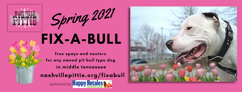 2021 Spring Fix-A-Bull (5).png