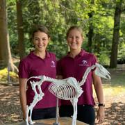 Bettina und  Nicole von EquiFine unterrichten Pferdeanatomie und Biomechanik
