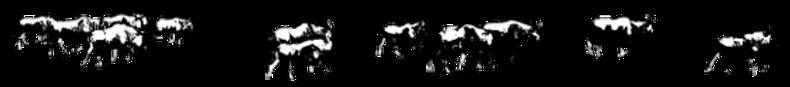 Wildebeest-2.png