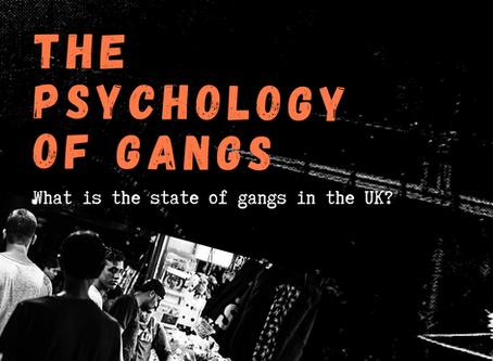 Psychology of Gangs (UK)