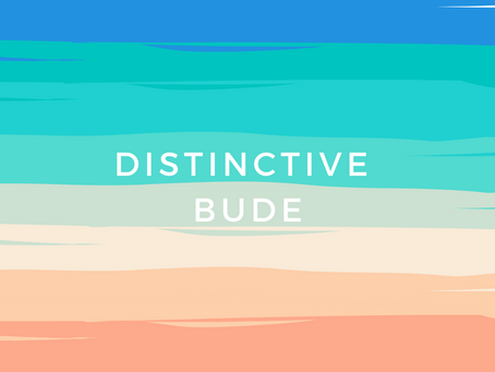 Bude Business Voice – Distinctive Bude