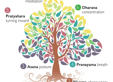 June Theme of the Month:                 Ahimsa - The Act of Non Violence