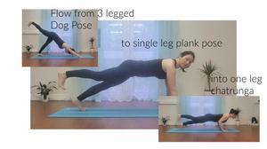 Single leg flow