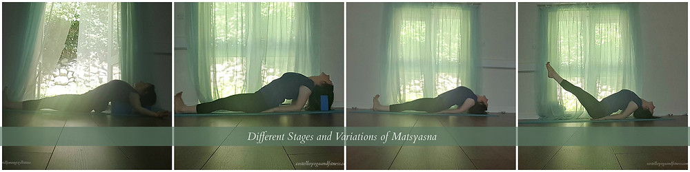 Variations of Fish Pose