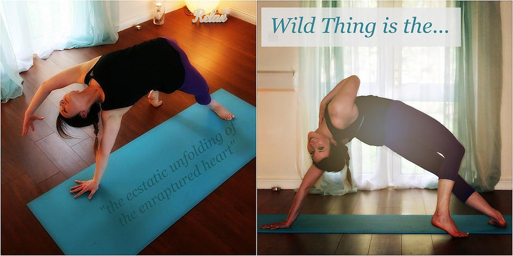 Wild Thing is...