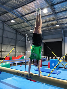 adult gymnastics.jpg