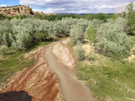 I've been 10 days on the journey and have completed work on rivers in Southern Utah, southern Ne