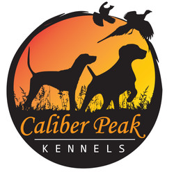 Caliber_Peak_Logo