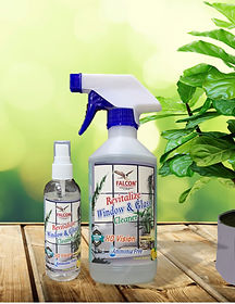 Falcon Window Cleaner Family Picture.jpg