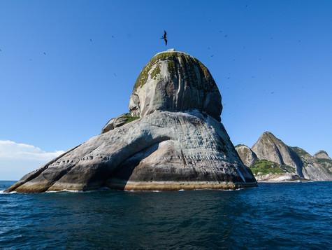 Arquipélago de Alcatrazes em São Sebastião será aberto aos turistas