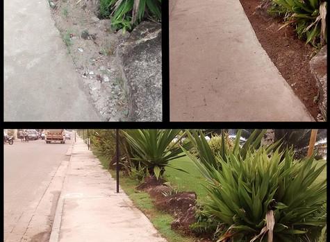 Revitalização do Jardim