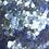 Thumbnail: EcoStardust Cascade Biodegradable Glitter
