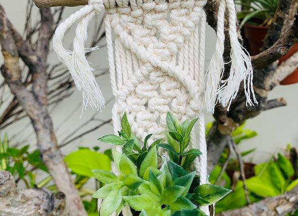 Plant Hanger - A