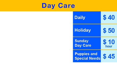 Day Care Table v6.png