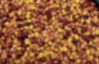 olives-en-saumure.JPG
