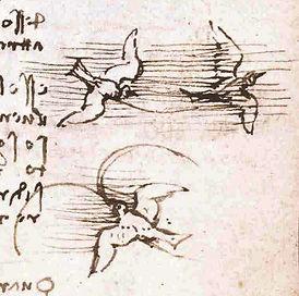 Leonardo_da_Vinci_-_Codice_volo_uccelli_