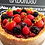 Thumbnail: Torta Chocolate com Frutas Vermelhas