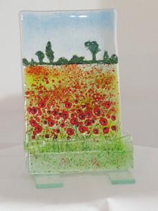 poppy field 6 (small).JPG