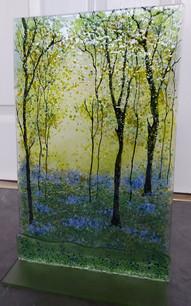 Large Bluebell woods.jpg