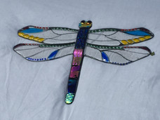 Dragonfly large