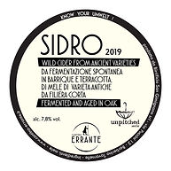 sidro 2019 - disco spina - 200505-01.jpg