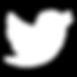 Twitter Logo White.png