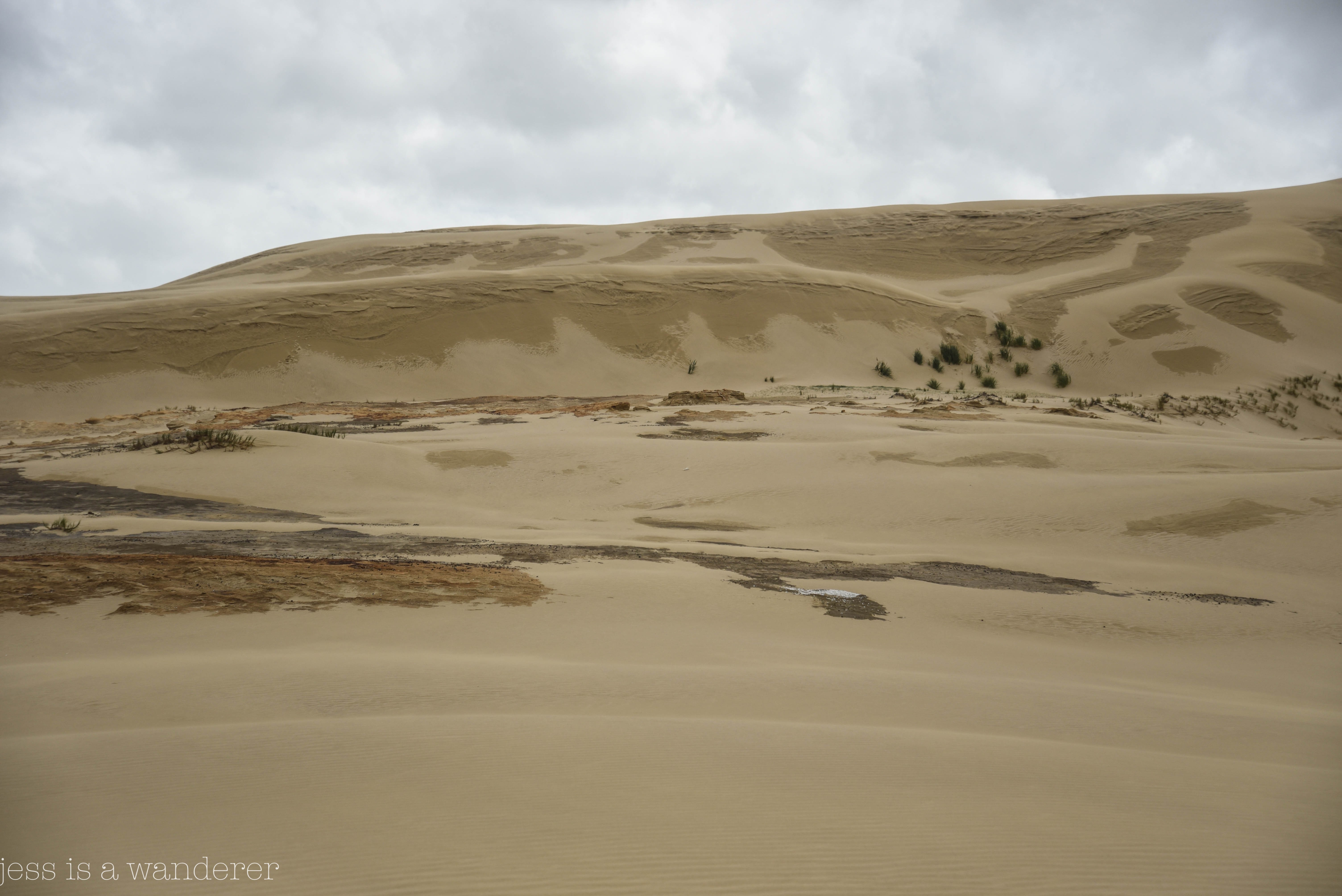 Jess is a Wanderer at Te Paki Dunes