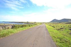 Easter Island - one road island!