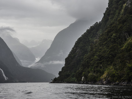 Jess is a Wanderer at Milford Sound