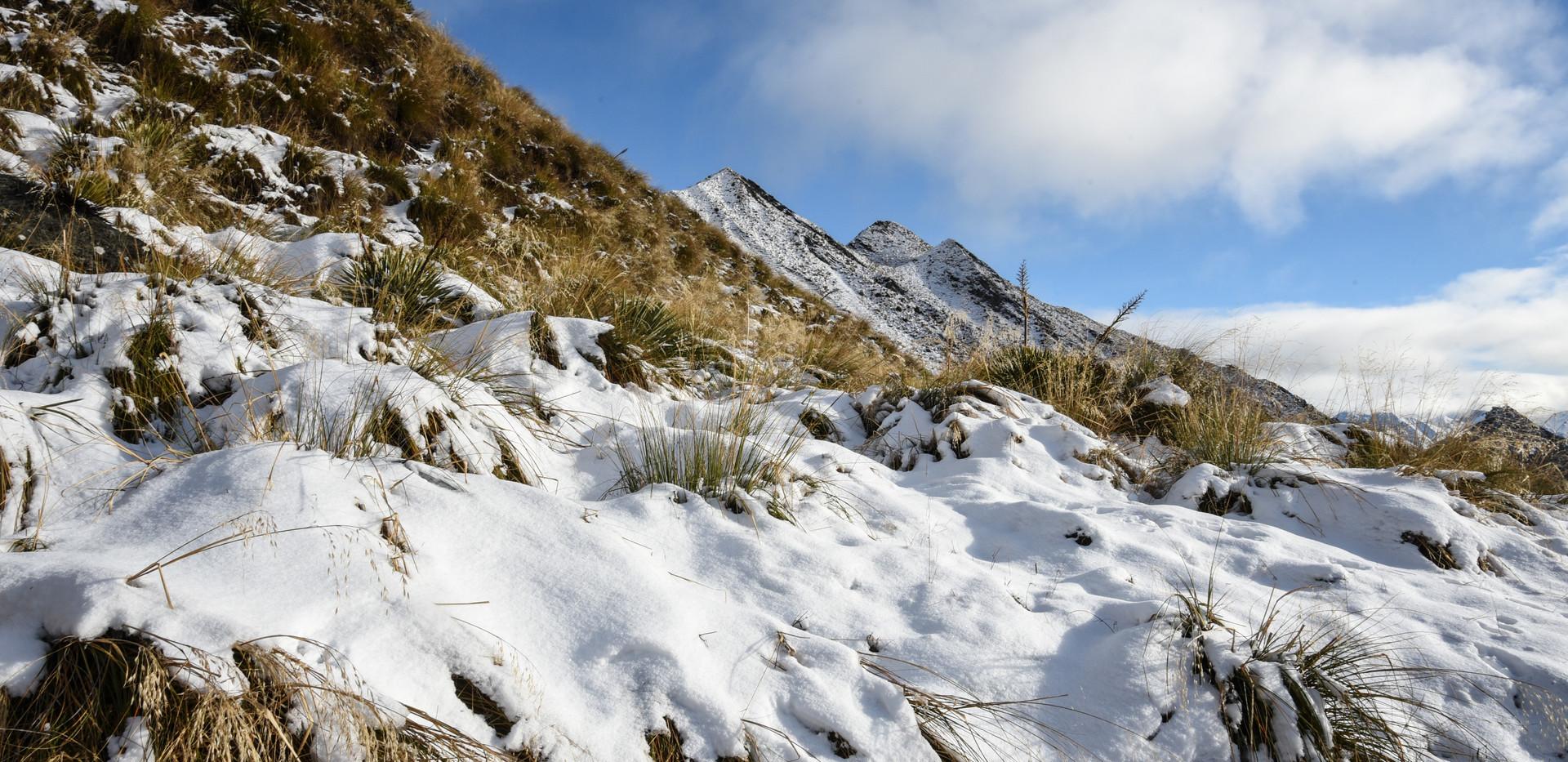 Thicker Snow