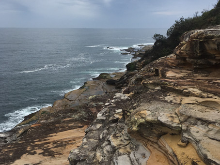Sydney's Coast