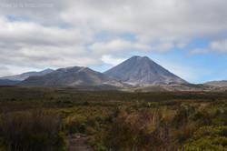 Ngauruhoe Distant