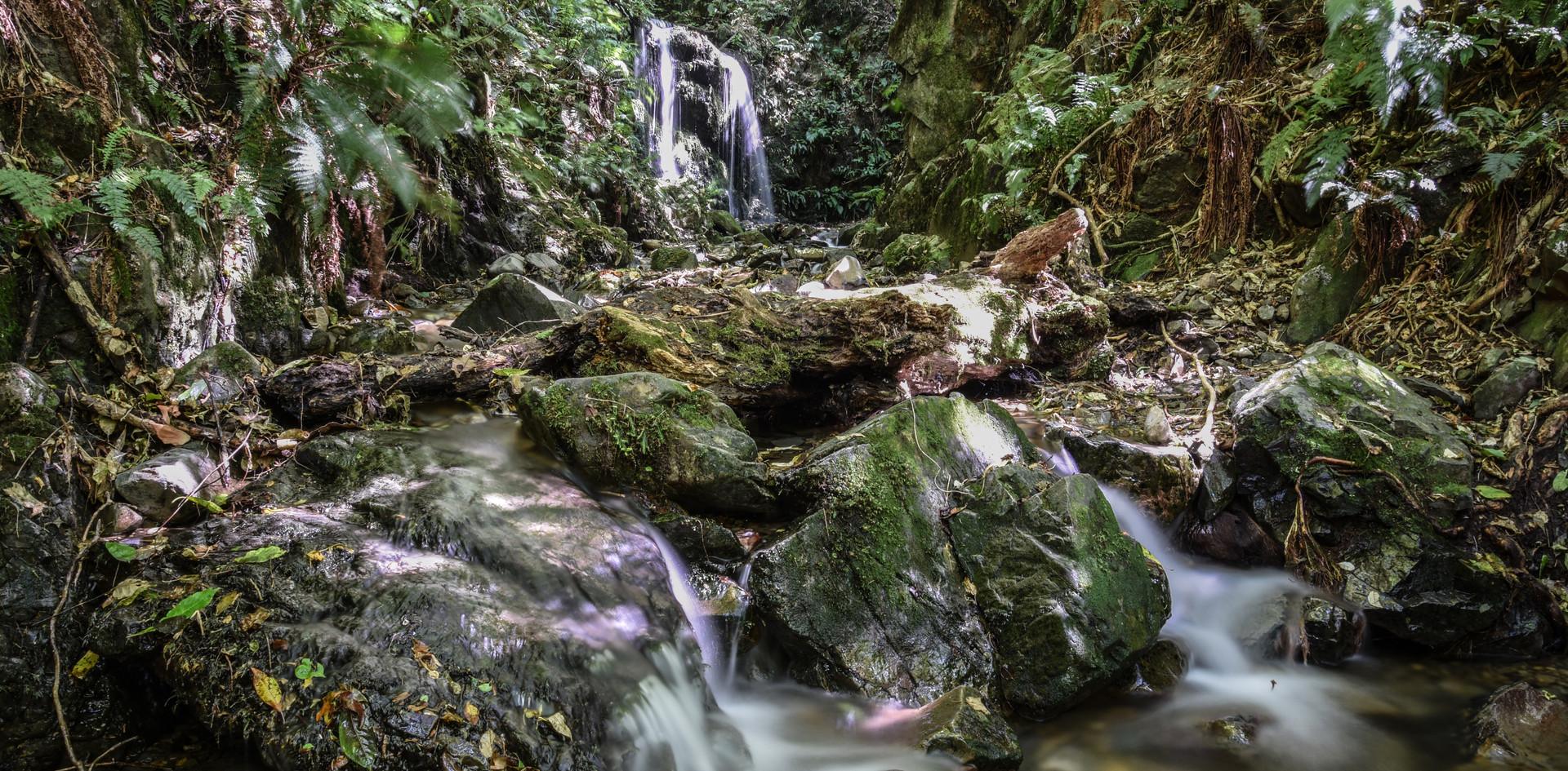 Kelceys Bush Water