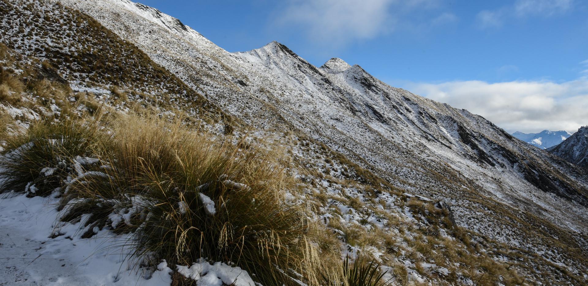 Snowy Summit