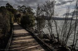 Lakeside Boardwalk