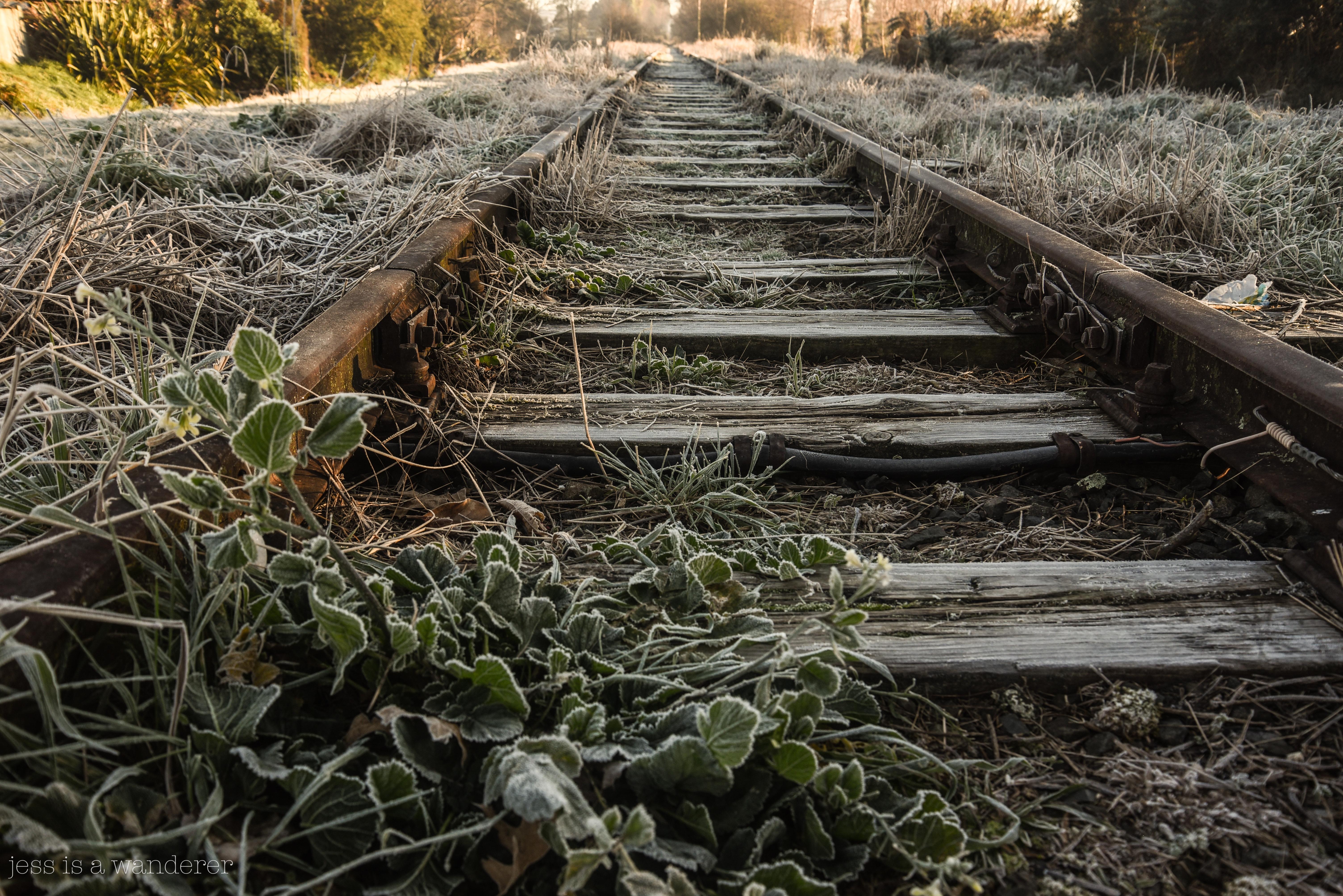 Frosty Railway Line