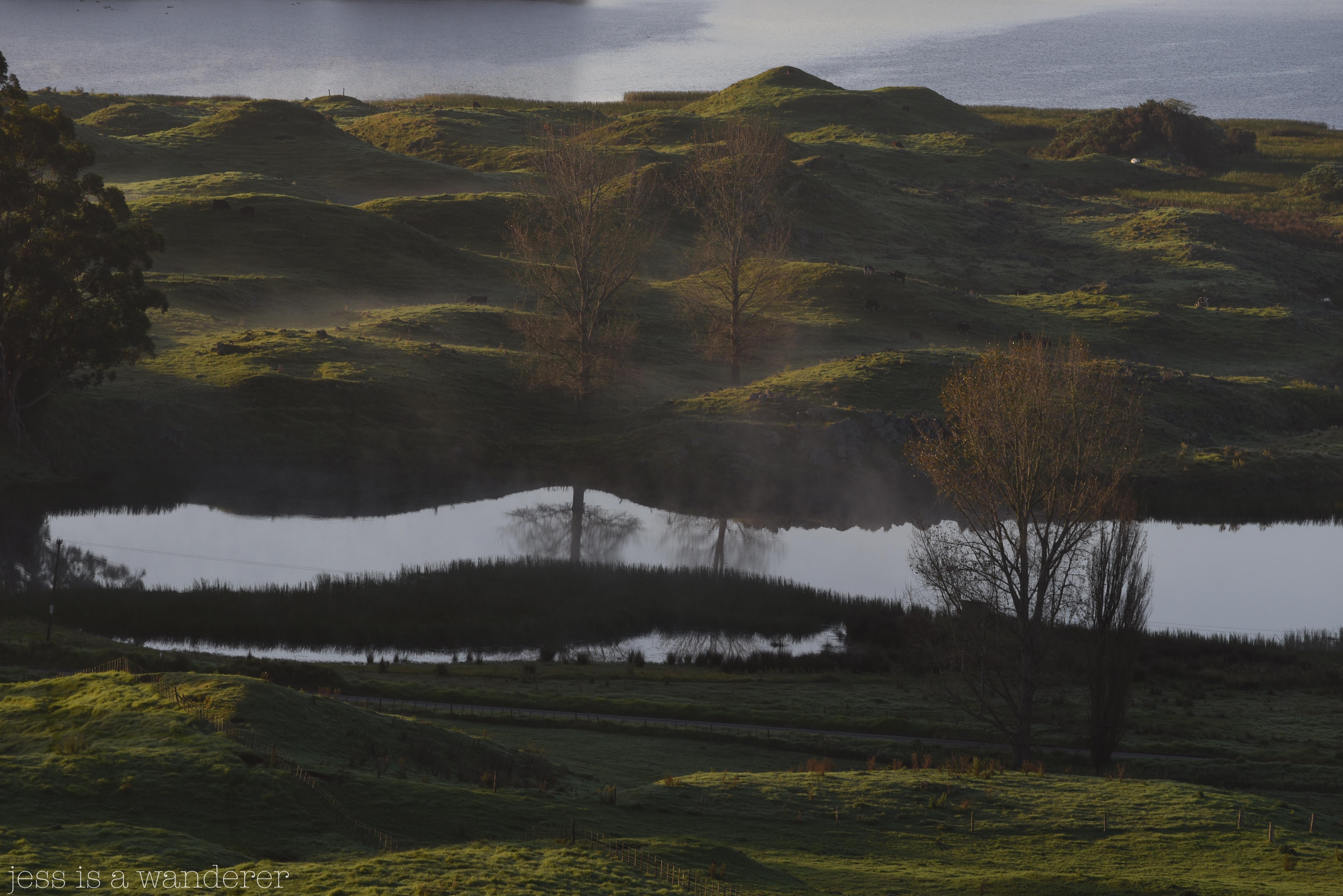 Lake Whareiti 17