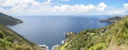 Cape Brett 6