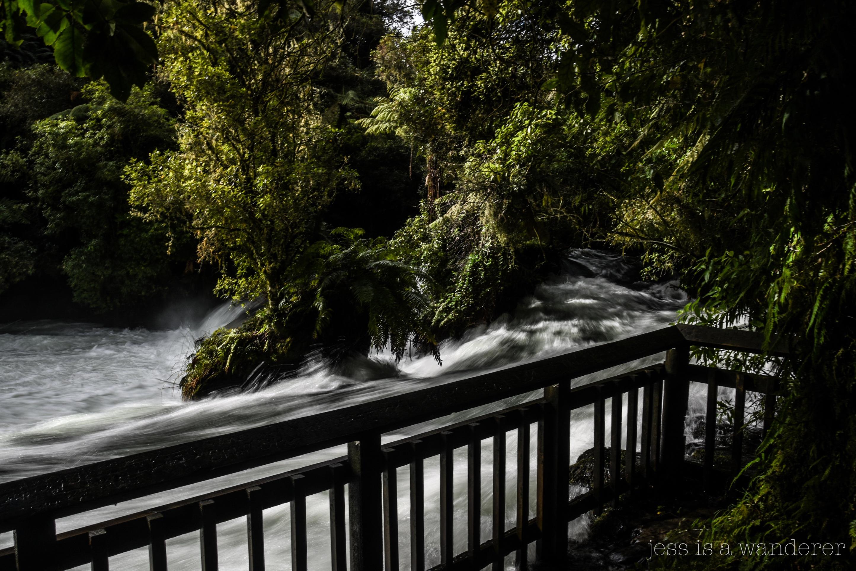 Flooded Steps