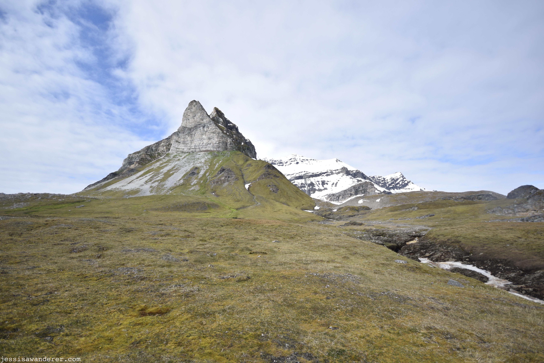 Tundra & Stream