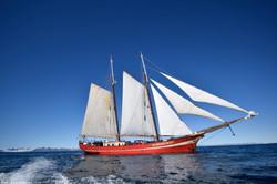 Noorderlicht Sailing